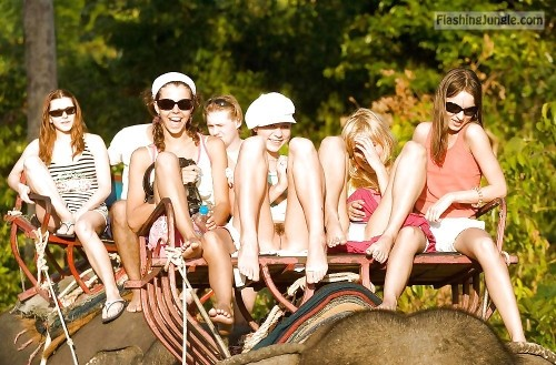 Pantyless elephant ride voyeur upskirt teen pussy flash public flashing no panties