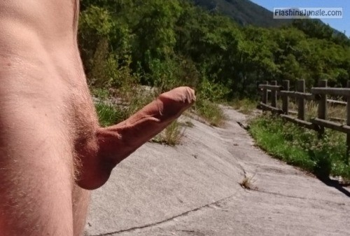 Gay men flashing dick at straight men 4