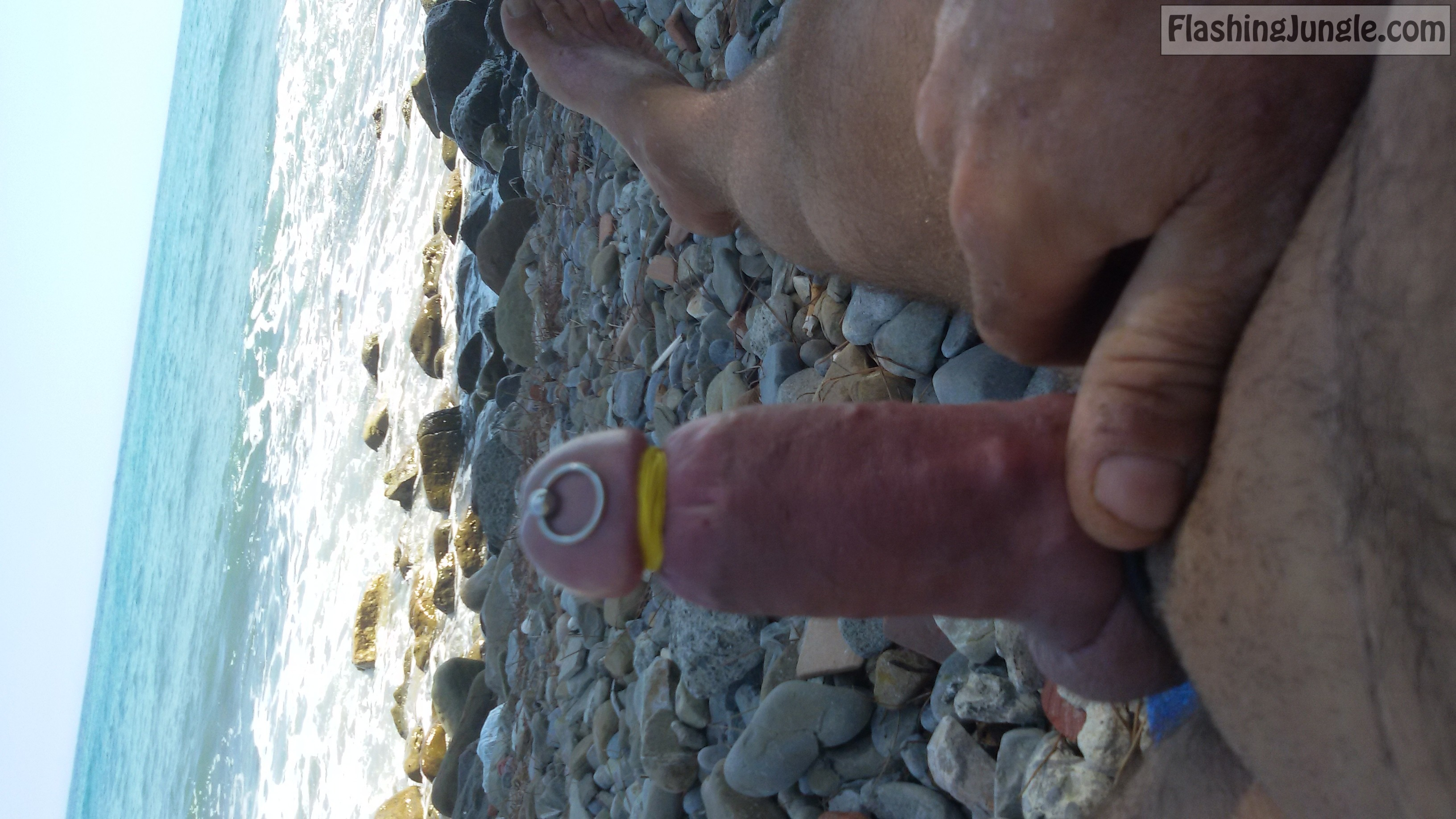 nudist beach small cock