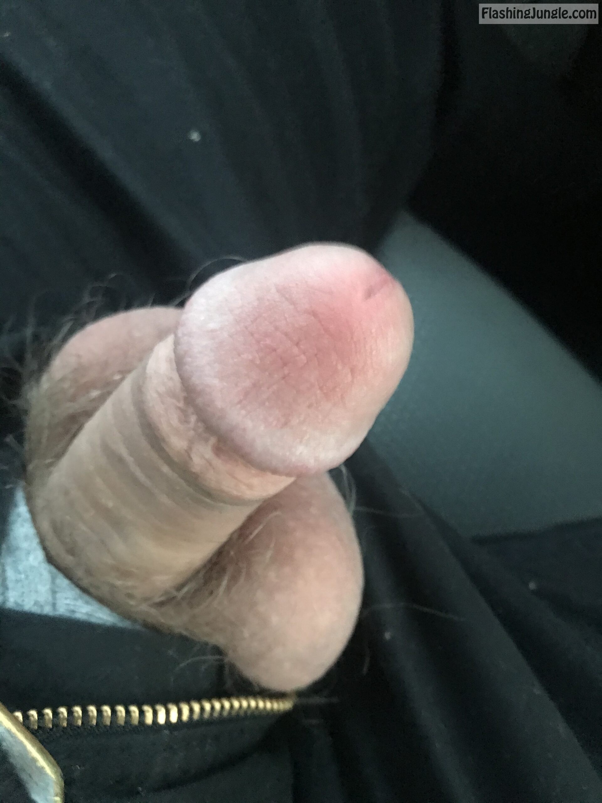 Real Amateurs Dick Flash Pics